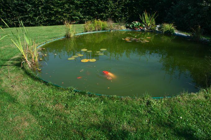 Phototh que de bassin for Bache plastique bassin