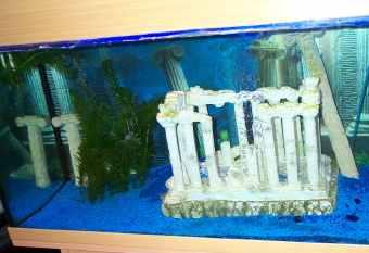 décoration aquarium grecque